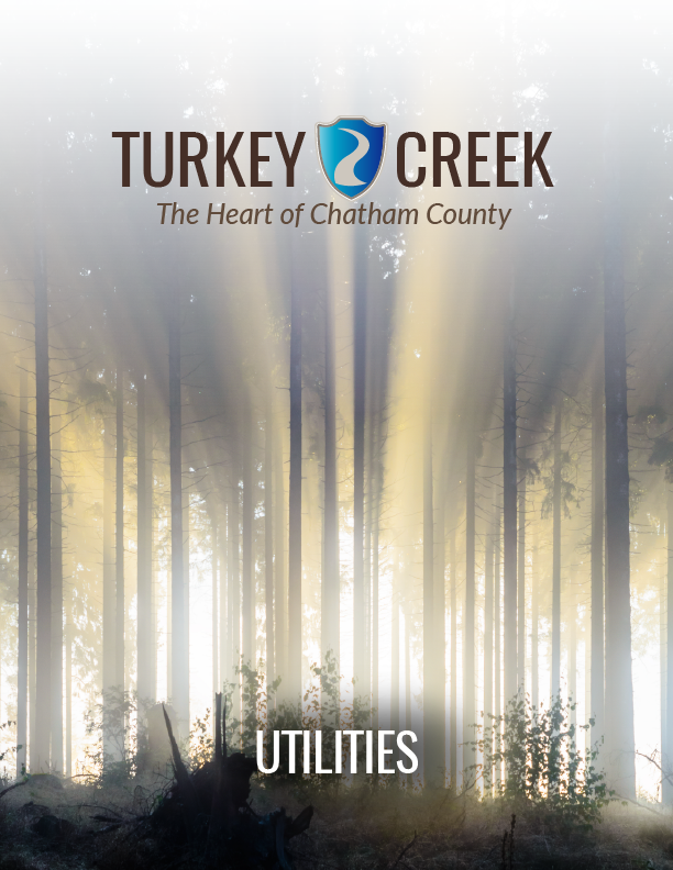 Turkey Creek Report